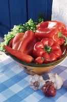 Photo of fresh vegetables in a bowl