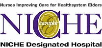 Nurses Improving Care for Healthsystem Elders logo