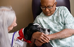 Patient petting a dog